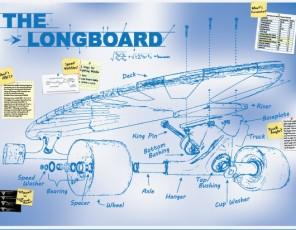 boardlife-1